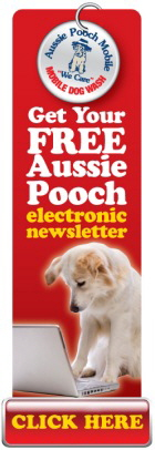 Subscribe to the Pooch Mobile Newsletter